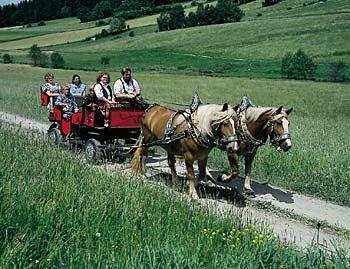 Familie bei einer Kutschenfahrt