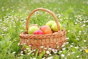 Gesunde Ernährung nach der Fastenzeit im Bayerwald