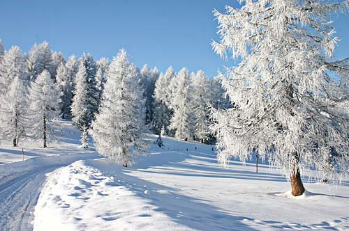winter bayerischer wald winterurlaub in bayern skifahren. Black Bedroom Furniture Sets. Home Design Ideas