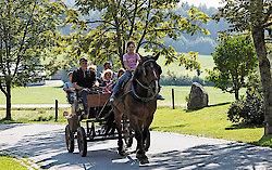 Bayerwald Pferdekutschfahrten