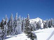 Bodenmais ein Aufregender Winterurlaub im Bayerischen Wald